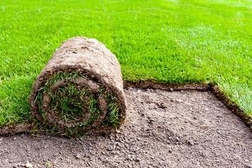 Création de jardins à Vauvenargues